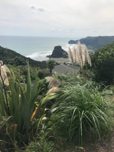 Three weeks in New Zealand and a few reflections | Linda Smith, lindaslife.com