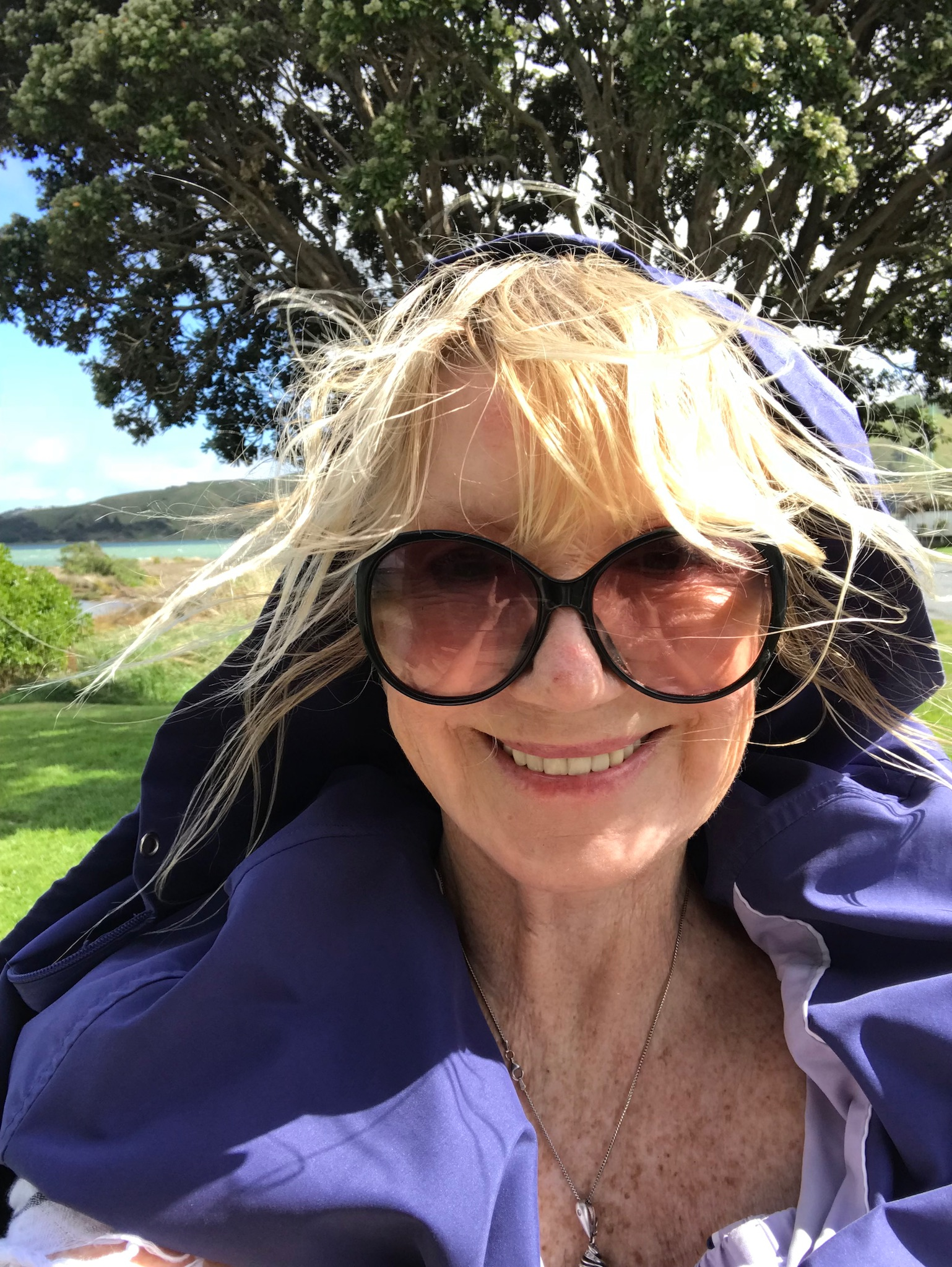 New Zealand Reflections | Linda Smith, LindasLife.com