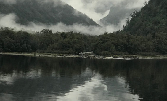 Three weeks in New Zealand and a few reflections   Linda Smith, lindaslife.com